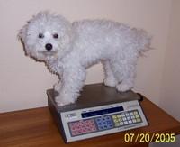 7/20/2005: Twelve pounds, two ounces